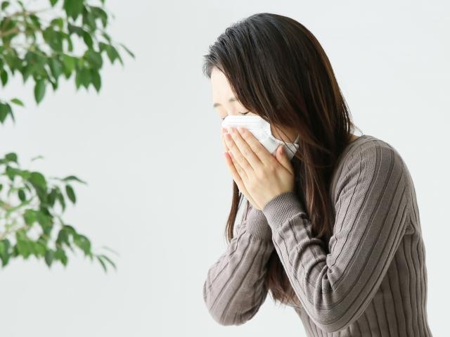 インフルエンザはウイルス