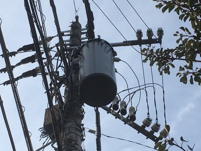 電線と雑学