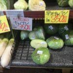 【野菜高騰】2018年2月野菜が高い!高騰の理由と今でも安く買える裏技とは